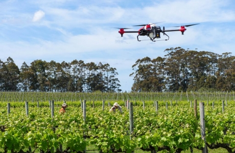 Các nhà nghiên cứu đưa ra đánh giá định lượng đầu tiên về nông nghiệp bền vững