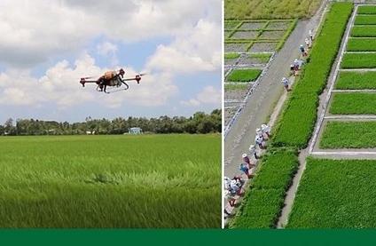 Hoàn thiện hệ sinh thái cho chuyển đổi số nông nghiệp Việt Nam