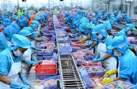 Doanh nghiệp cần nắm vững những quy định nhập khẩu thủy sản của EU