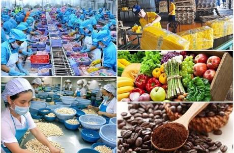 """Xuất khẩu nông sản - """"Điểm sáng"""" của nền kinh tế"""