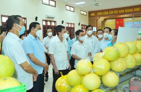 Hà Tĩnh tổ chức hội nghị xúc tiến tiêu thụ bưởi Phúc Trạch, kết nối trực tuyến hơn 300 điểm cầu