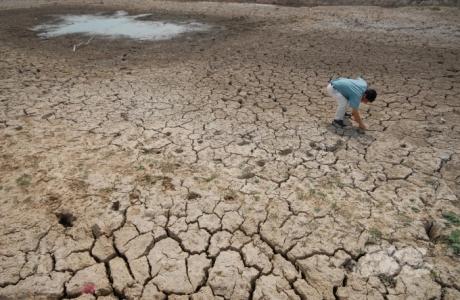 Biến đổi khí hậu là thách thức lớn nhất với sản xuất lương thực