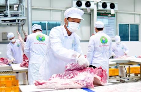Nông nghiệp Hà Nội: Nâng cao năng lực chế biến nông sản