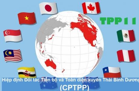 Xuất siêu sang thị trường các quốc gia thực hiện Hiệp định Đối tác toàn diện và tiến bộ xuyên Thái Bình Dương