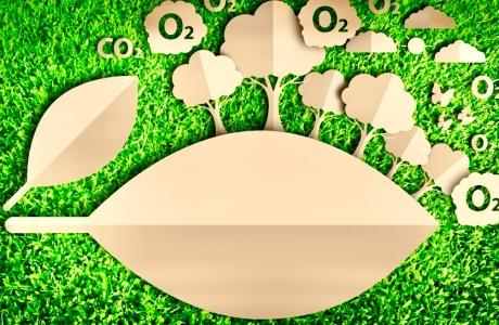 Bảo vệ môi trường gắn liền với mục tiêu phát triển bền vững