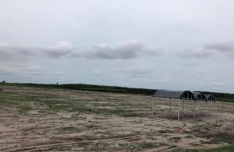 Bà Rịa – Vũng Tàu kiểm tra việc rao bán đất phân lô, Phú Mỹ Holdings khẳng định chưa hề bị phạt