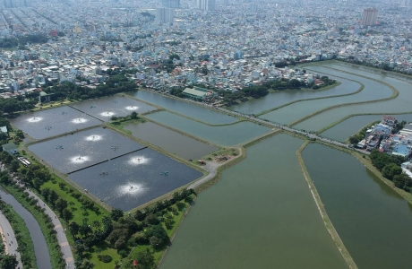 Nước thải đô thị có nên sử dụng trực tiếp để tưới cho đồng ruộng?