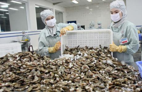 Nắm bắt cơ hội đẩy mạnh xuất khẩu tôm sang Nga