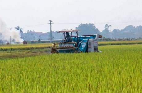 Đến hết 2021 Hà Nội phấn đấu có thêm 3 huyện đạt chuẩn nông thôn mới
